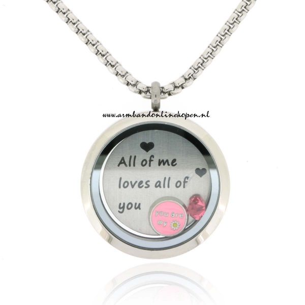 munt ketting hanger all of me loves all of you