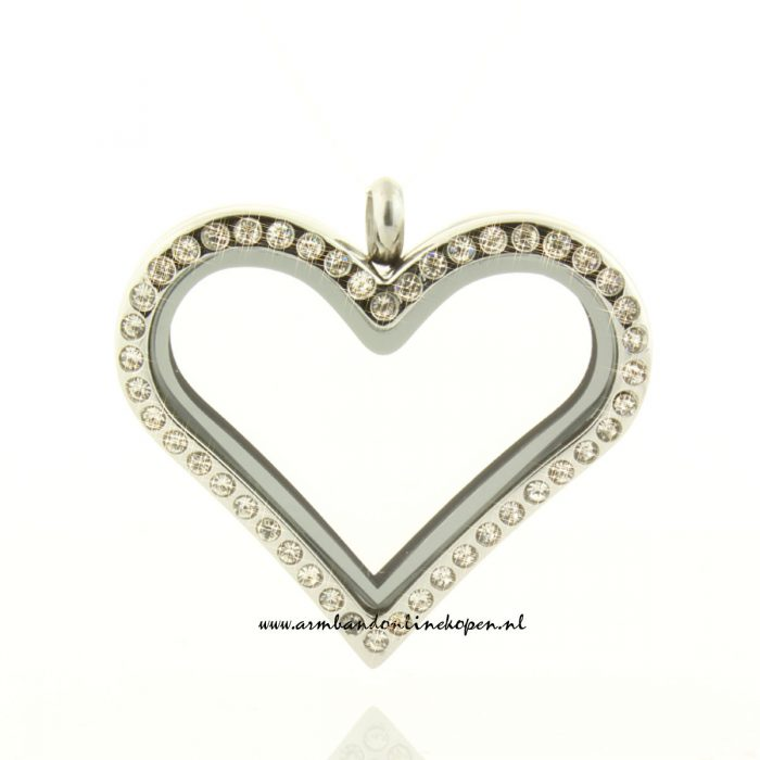 strass hart hanger met munten