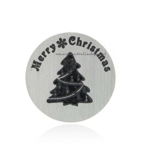 munt Merry Christmas voor munt hanger