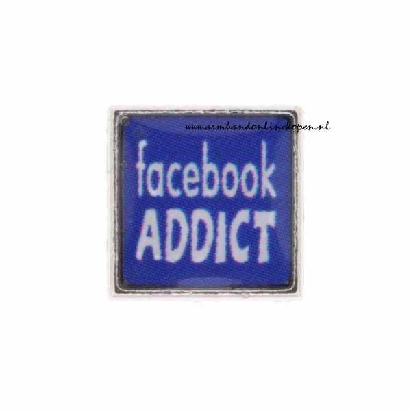 facebook addict bedel
