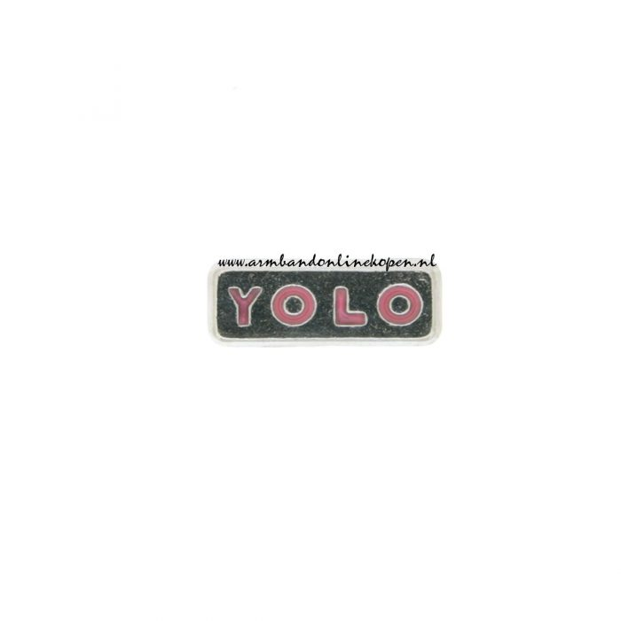 bedel YOLO you only live once
