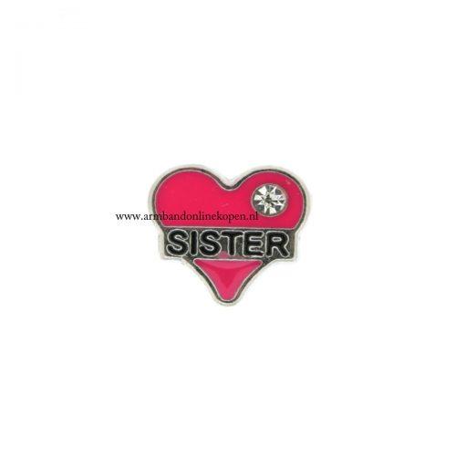 bedel munt hanger of armband liefde voor je zus donker roze