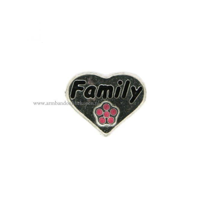 bedel munt hanger of armband love my family zilver