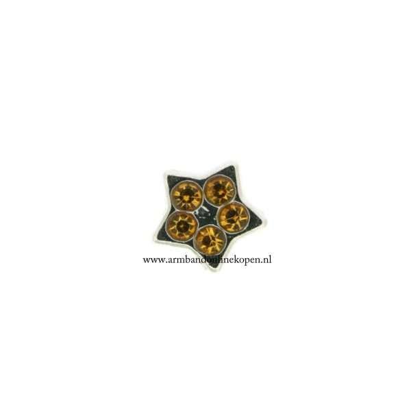 bedel munt hanger of armband lucky star