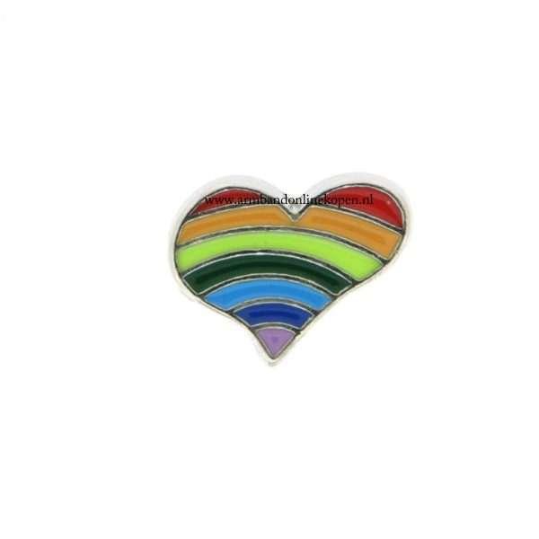 bedel munt hanger of armband regenboog