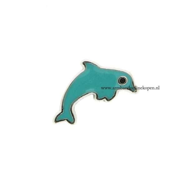 dolfijn bedel voor munt hanger of armband