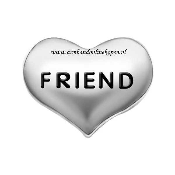 bedel love friend zilver