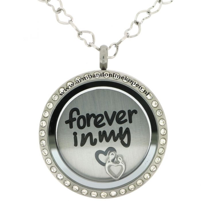 rvs munt ketting forever in my heart met bedels