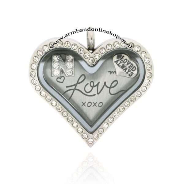 edelstaal munt hanger zirkonia steentjes hart vorm love munt
