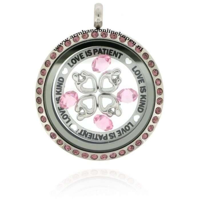 munt hanger 2016 met bedels en roze zirkonia steentjes