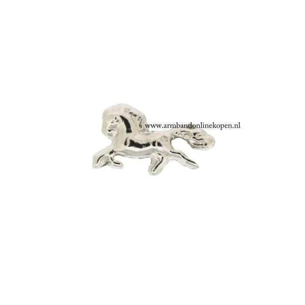 paard bedel voor munt hanger of armband