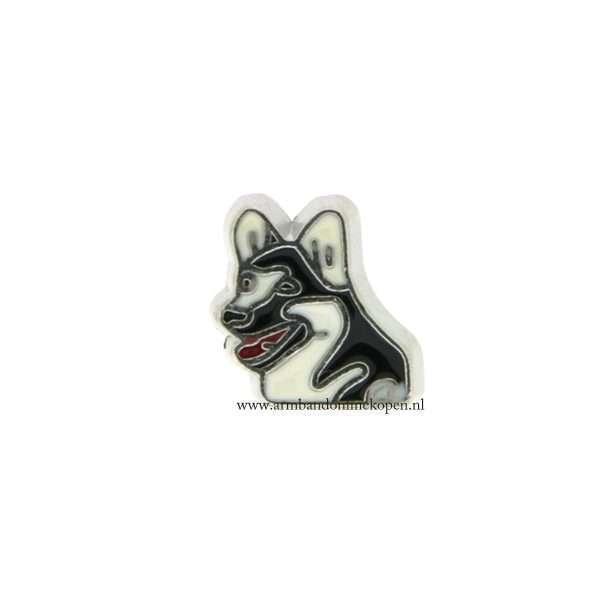 hond bedel voor armband of hanger