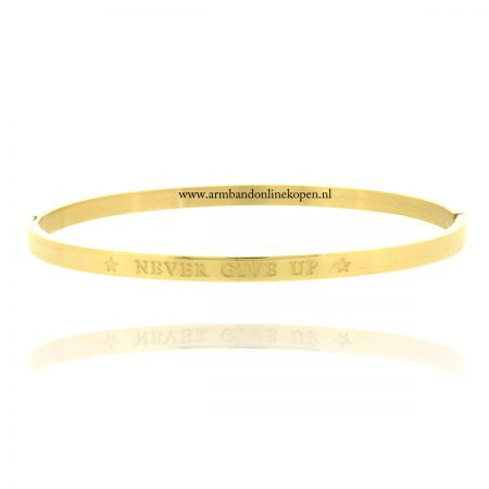 quote armband roestvrij staal never give up goud